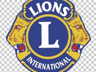 lions sessa aurunca