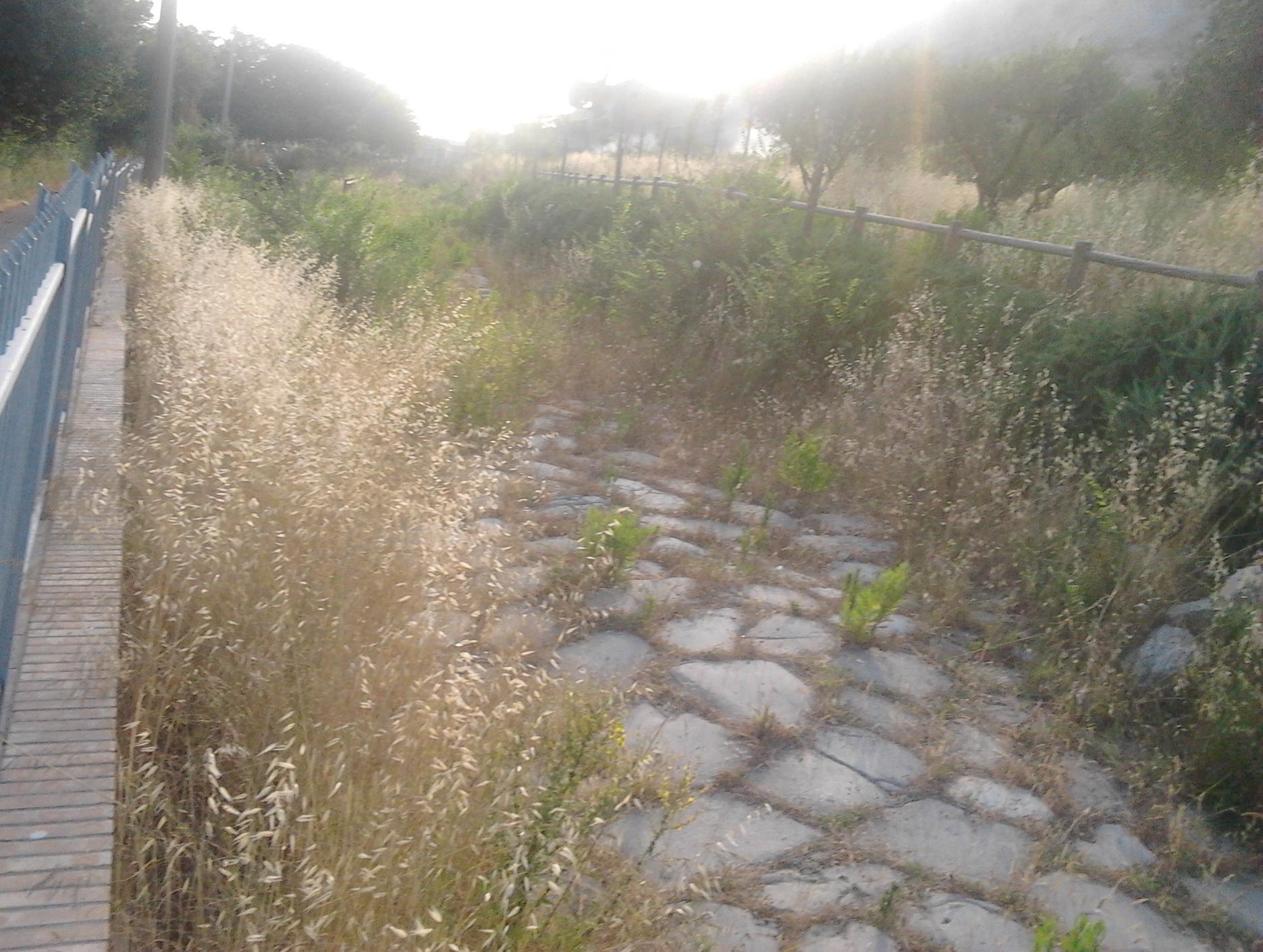 sito archeologico mondragone