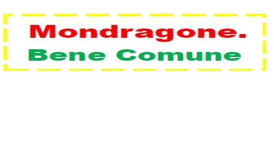 logo mondragone-bene-comune
